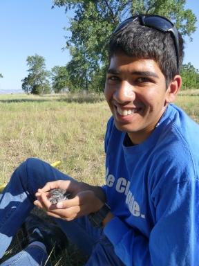 Harnawaz Boparai holding Western Bluebird chicks